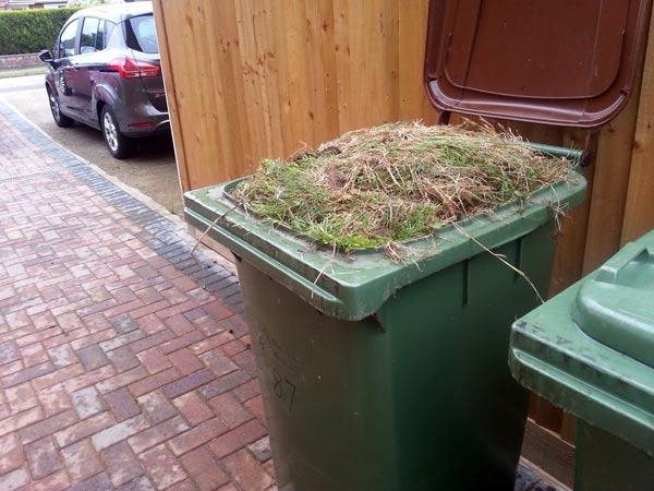 Smaltimento-residui-e-rifiuti-vegetali-fiorenzuola-d-arda
