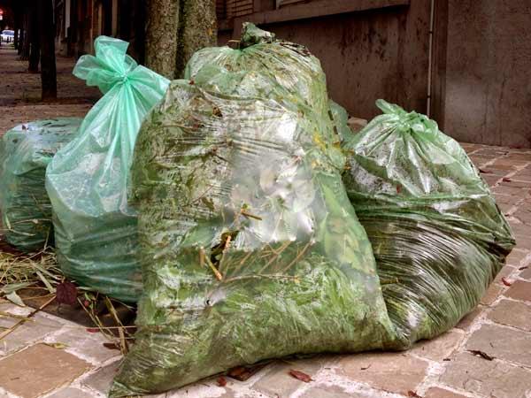 Smaltimento-rifiuti-vegetali-piacenza